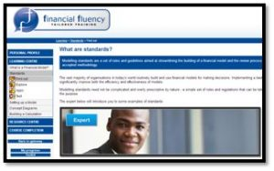 Intro financial modelling standards