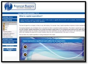 Modelling finacial options - capital expenditure